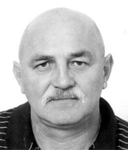 Damir Pavlić Hulk